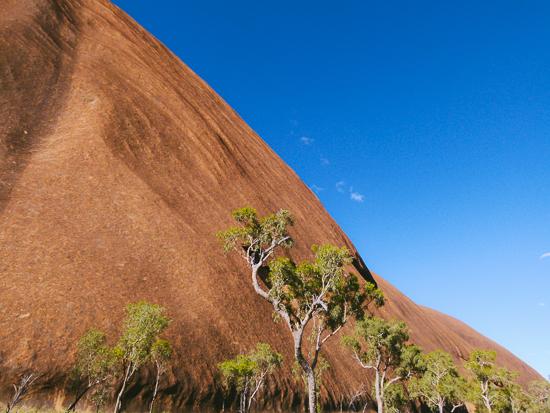 Australien-Outback-Uluru-Wayoutback-Tour