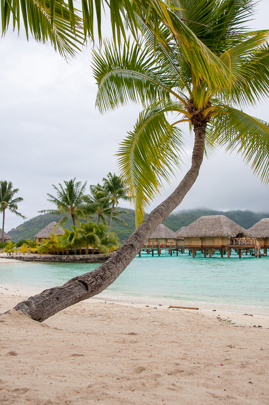 Bora_Bora_Review_Travelmaniac.de-16