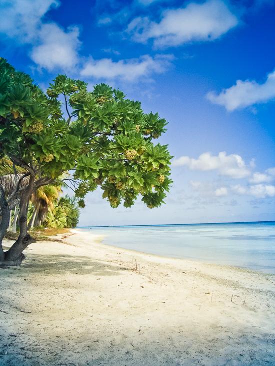 Fakarava_French_Polynesia_Travelmaniac-015
